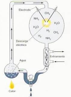 síntesis de monómeros biológicos