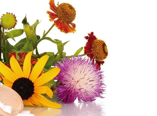 medicina natural para tu vida