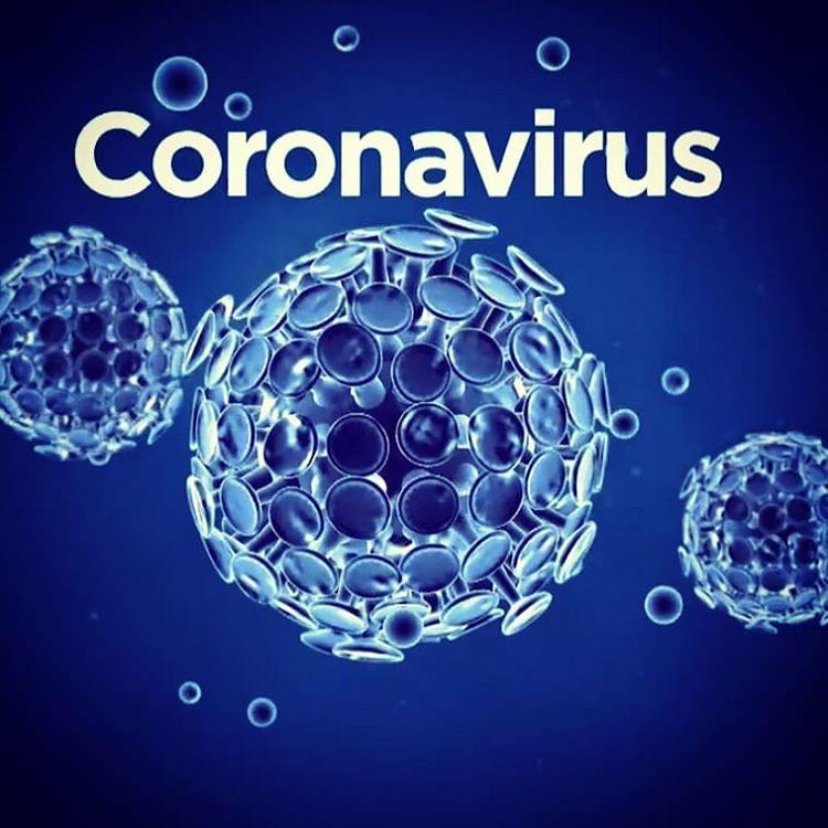 El nuevo Coronavirus (CoV)