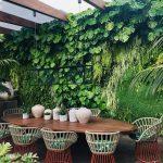 7 beneficios psicológicos de tener ecosistemas artificiales en casa